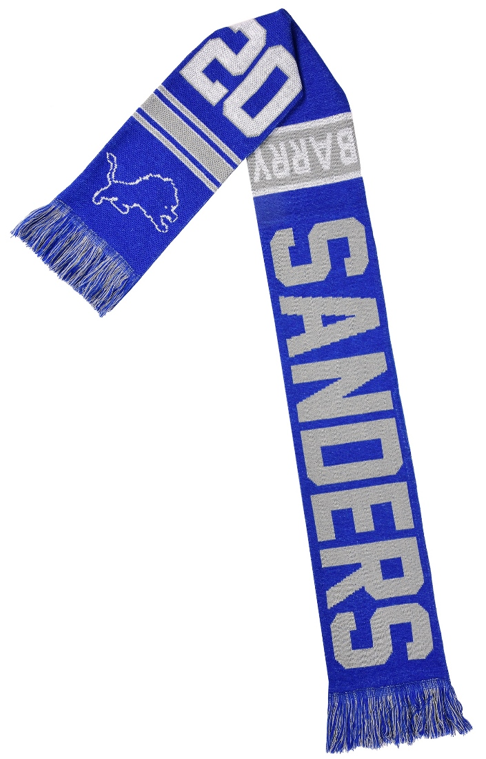 "Barry Sanders Detroit Lions NFL ""Football Greats"" Wordmark Scarf"
