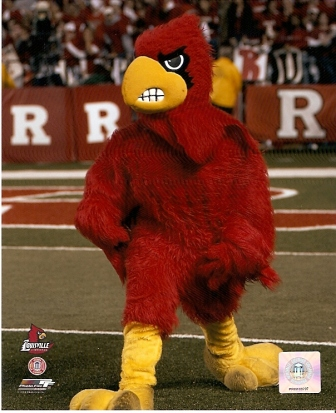 Louisville Cardinals Mascot 8x10 Photo